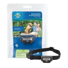 Petsafe Rechargeable In Ground Fence Receiver Collar Pig00 13737 At Tractor Supply Co