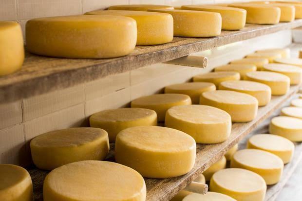 """Resultado de imagem para serra da canastra queijo"""""""