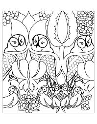 Tranh tô màu những con cú « in hình này