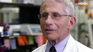 Dr. Fauci: Coronavirus now at 'outbreak ...