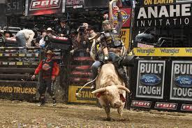 bull rider wallpapers wallpaper cave