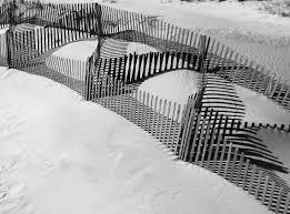 Jersey Sand Dune Fence Love S Photo Album