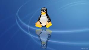 linux penguin hd wallpaper wallpaper