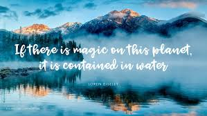 quotes that illustrate why water is life