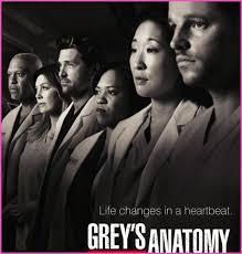 """Dominic Hoffman Will Guest Star On ABC's """"Grey's Anatomy"""" 