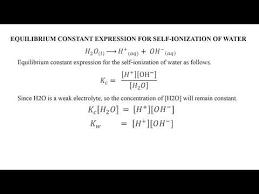 balanced chemical equation for the self
