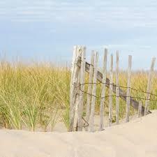 Amazon Com Beach Fence Photo With Sand Dune And Beach Grass Cape Cod Dune Fence 02 Blue And Green Beach Art Coastal Decor Handmade