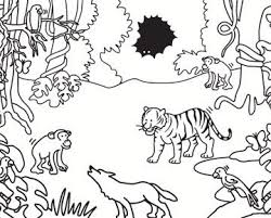 Knutseltips Met Afbeeldingen Kleurplaten Oerwoud Regenwouden