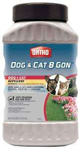 Ortho Dog And Cat B Gon Dog And Cat Repe Buy Online In El Salvador At Desertcart