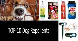 10 best dog repellents sprays