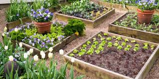 the benefits of raised bed gardening