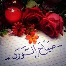 صور صباح للحبيب صباح الخير ياروح قلبي صباح الورد