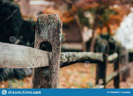Close Up Of Rustic Wooden Post In Fence Stock Image Image Of Urban Closeup 130648017