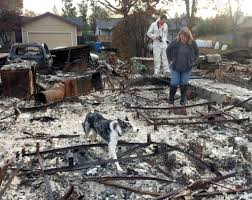 FALL 2019 | Recovering from the Ashes | Archaeological Conservancy
