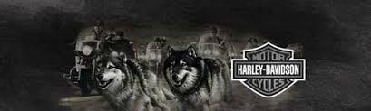 Wolf Edge Harley Davidson Rear Window Graphic Custom Vinyl Graphics