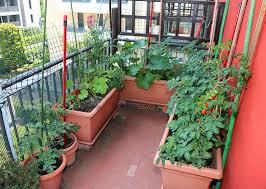 25 incredible vegetable garden ideas