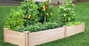 Greenes Fence 16 X 8 Raised Garden Bed Only 79 94 Delivered Regularly 133