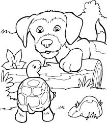 Hond En Schildpad Kleurplaat Kleurplaatje Nl