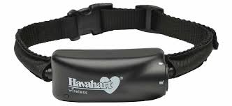 Havahart Radial Wireless Fence For Small Dogs Review Quality Dog Fence
