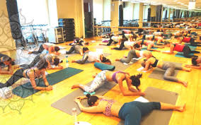 lifestyle yoga best yoga therapy