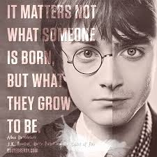 it matters not what someone is born but what they