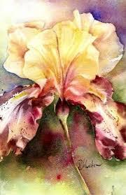 Perry Johnston | Watercolor flowers, Iris art, Floral watercolor