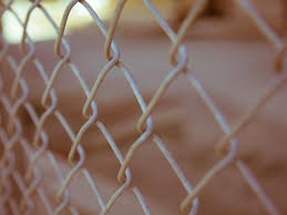 How To Hide A Chain Link Fence Quick Fixes Valley West Landscapes