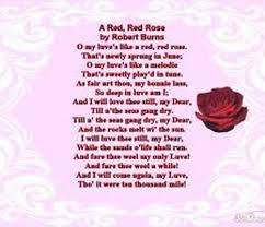 rose flower a rose flower poem
