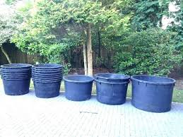exciting big white garden pots large