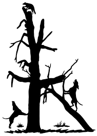 Raccoon Climbing Decal Md Vinyl Coon Hunting Sticker Wildlife Decal