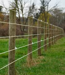 Ag 5761 Dogmaster Trainers By Products Electric Fence Fencing Wiring Diagram
