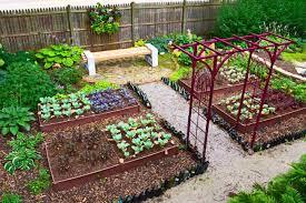 diy grow your own vegetable garden