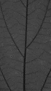 dark leaf texture nature pattern