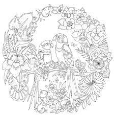 De Magie Van De Jungle Johanna Basford Kleurplaten Mandala