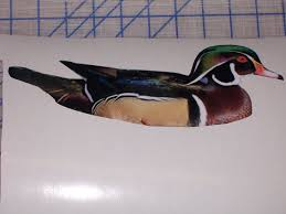 Mandarin Wood Duck Full Color Graphic Window Decal Sticker