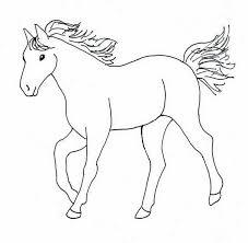 Paard Kleurplaten Afbeeldingen Paard Kleurplaten Plaatjes En