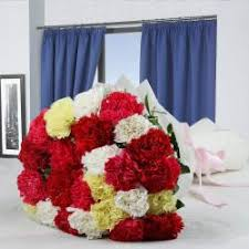 send flower carnations gifts to