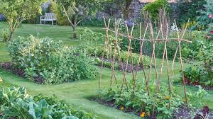vegetable garden ideas types on a budget