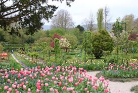 claude monet s gardens at giverny a
