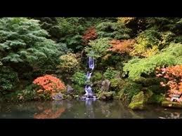 zen garden the garden