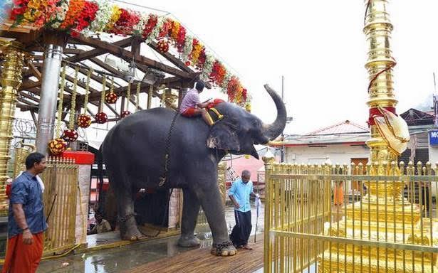 Image result for sabarimala elephant