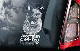 Australian Cattle Dog Car Sticker Blue Heeler Window Sign Decal Gift Pet V06 Ebay