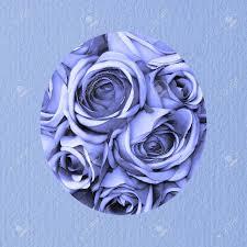 Tarjeta De Cumpleanos Con Las Rosas Azules Fotos Retratos