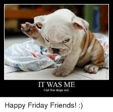 let the dogs out happy friday friends