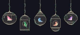 ensemble d'oiseaux dans des cages dorées - Telecharger Vectoriel ...