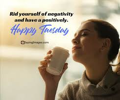 tuesday quotes you definitely need to share com
