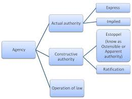 MLL215 – Commercial Law