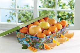 navel oranges ruby red gfruit