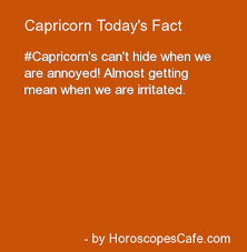 capricorn zodiac t shirt born t shirt women t