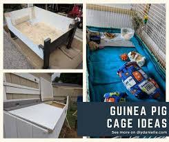guinea pig cages diy danielle